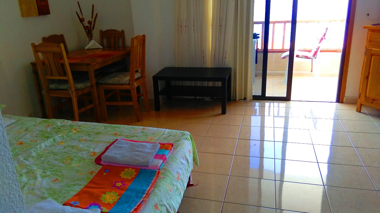 NO agency fee 1 bedroom with ocean view Los Cristianos